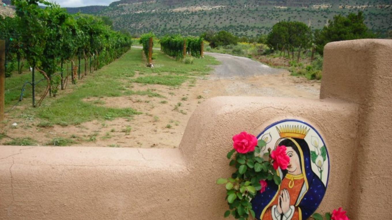 Guadalupe Vineyards Entrance – Antonio Trujillo