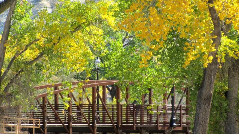 Pedestrian Bridge from Riverside Park to Hartman Park – Edward M. Kotyk