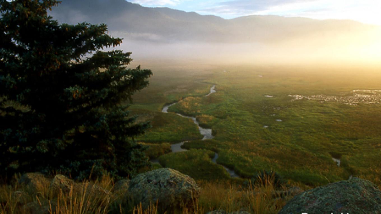 Morning fog in the Valle San Antonio. – Don J. Usner
