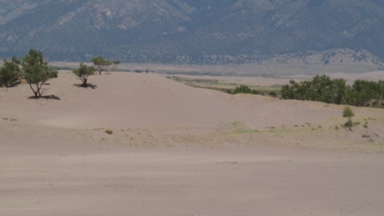 Horseback riding on the Sand Dunes