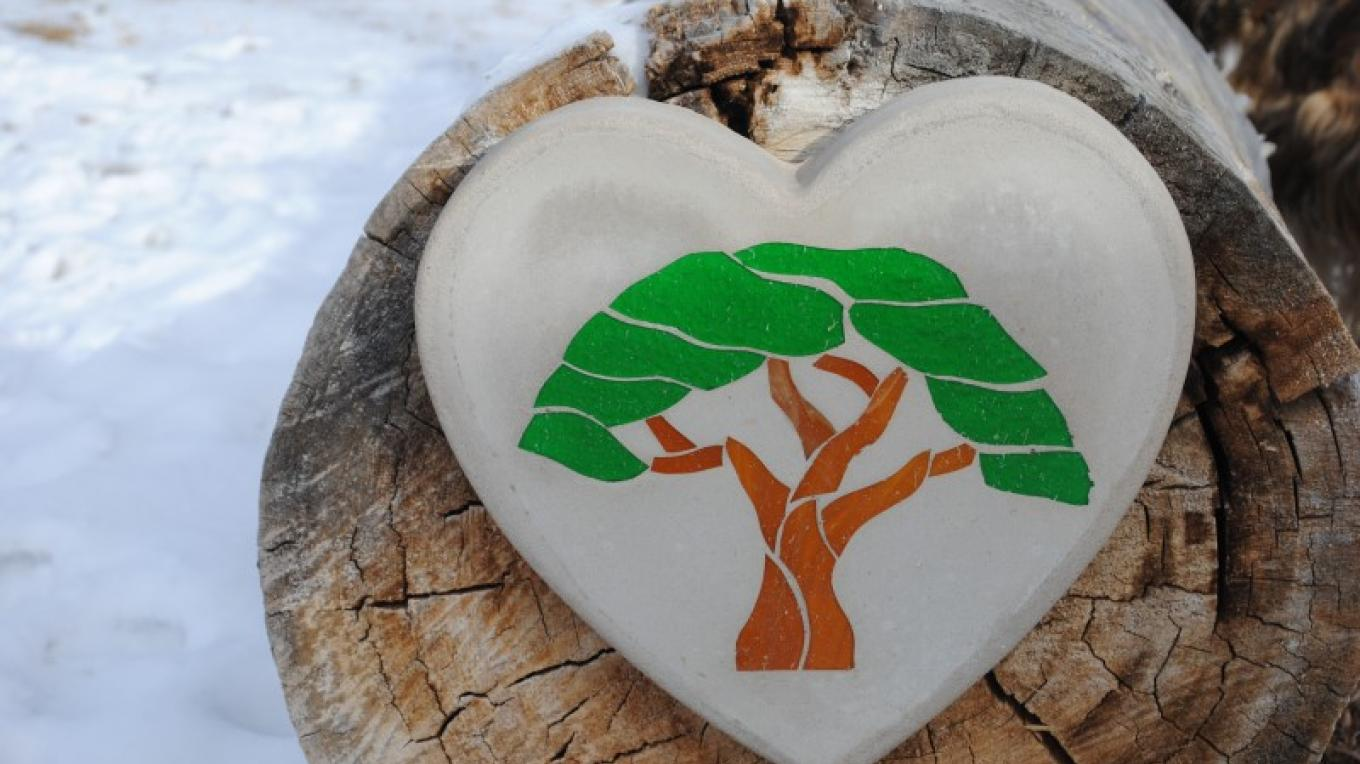 Heart shaped stone with tree – Jolt