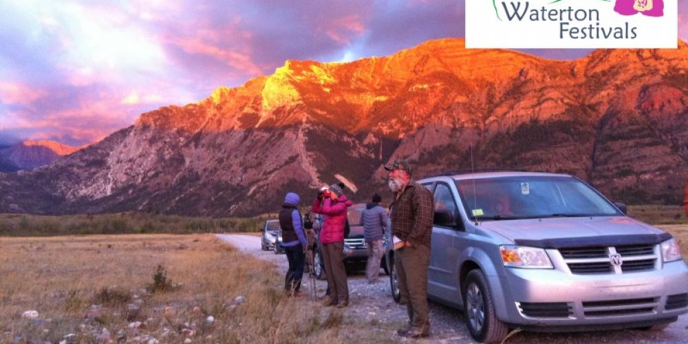 Learning about the Elk rut on location with Dale Paton – Michaela Enzmann