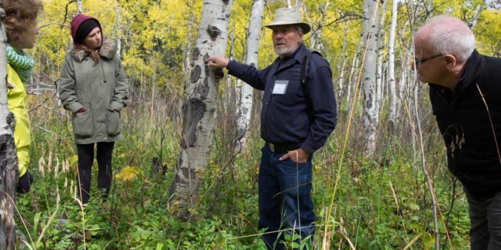 John Russell shows bear traces – Michaela Enzmann