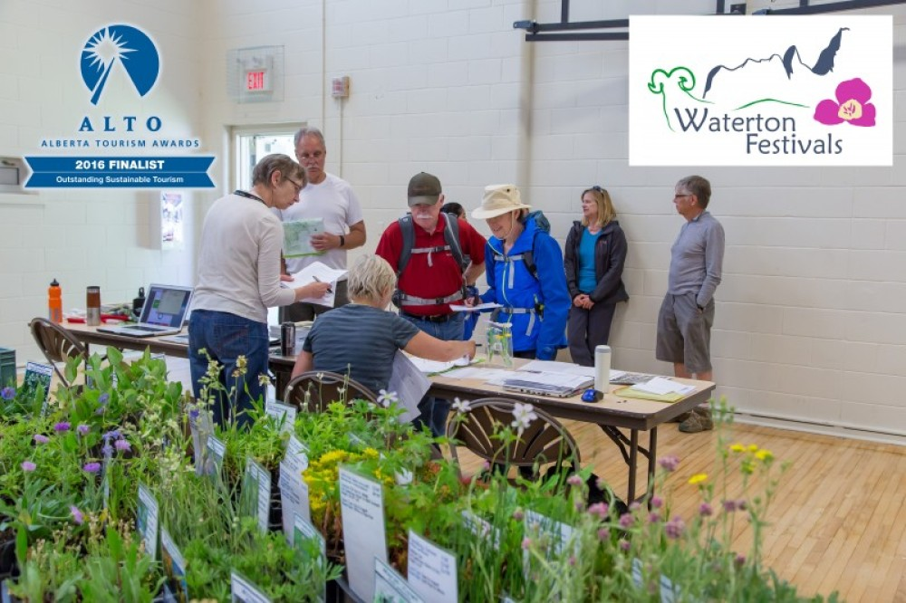 Wildflowers for sale at the registration in the Waterton Community Centre. – Photo: Frank Weinschenk