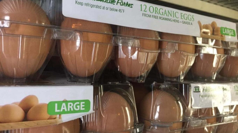 Organic eggs – bacchusfinefood