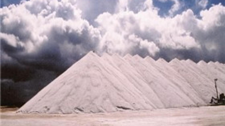 Morton Salt Company