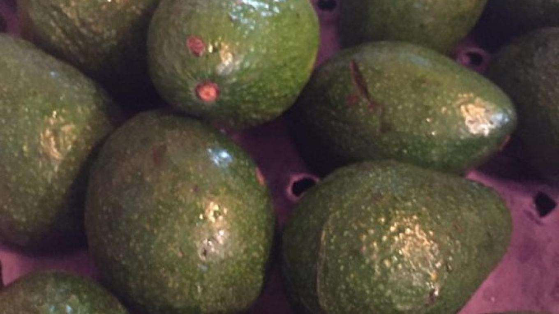 Avocados – bacchusfinefood