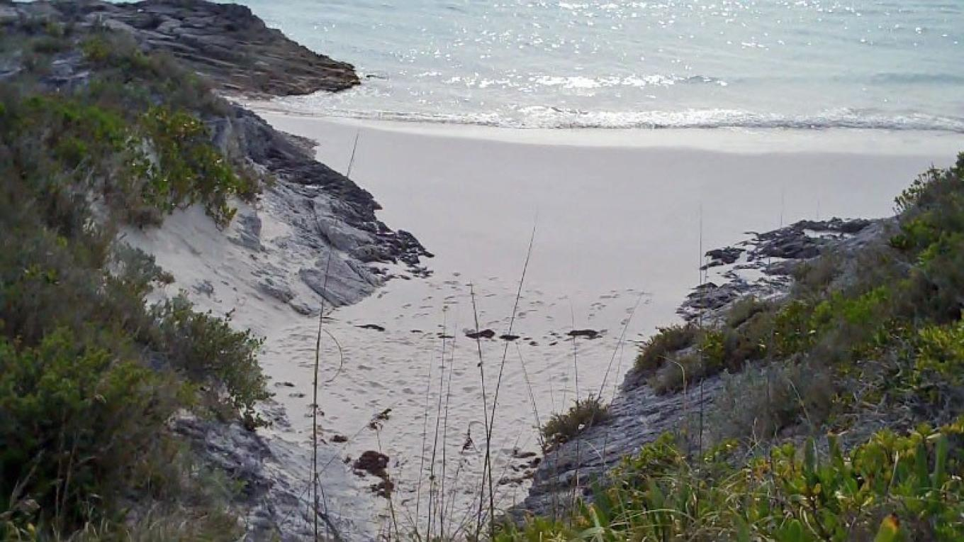 Cove at Lighthouse Beach, South Eleuthera – Bahamas Ministry of Tourism