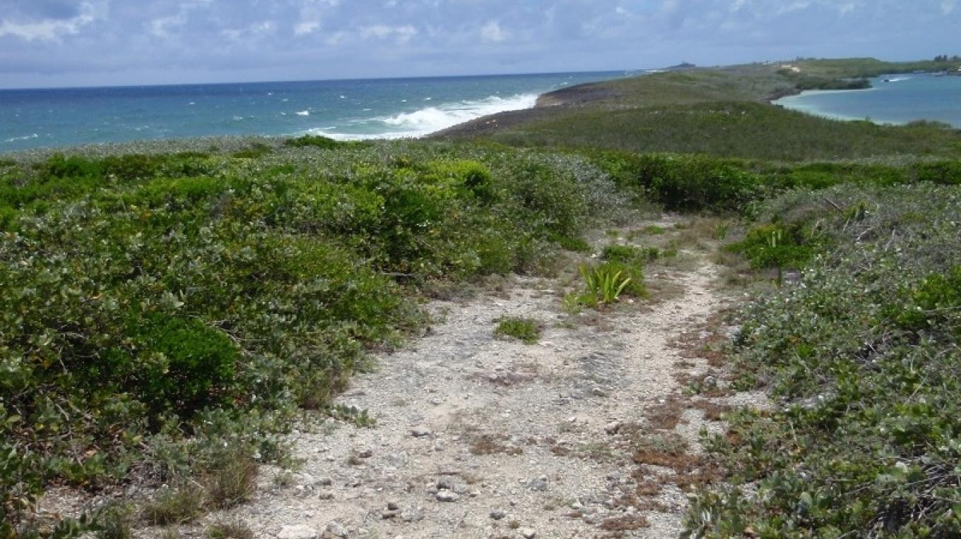 A photo of Tilloo  Cay Reserve. – Bahamas National Trust