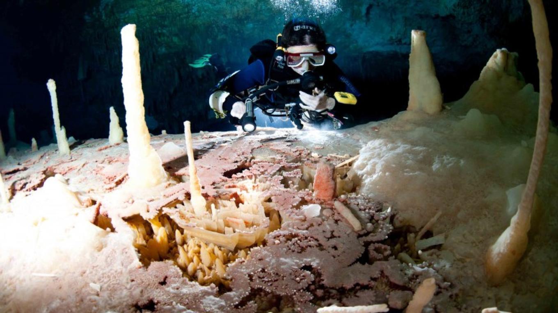 Ralph's Pool – Mr. Brian Kakuk, Bahamas Underground