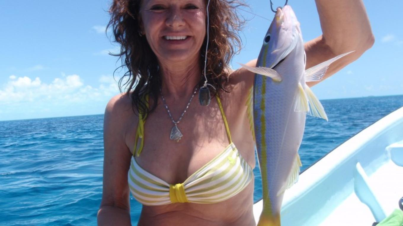 Nice Yellow Tail snapper