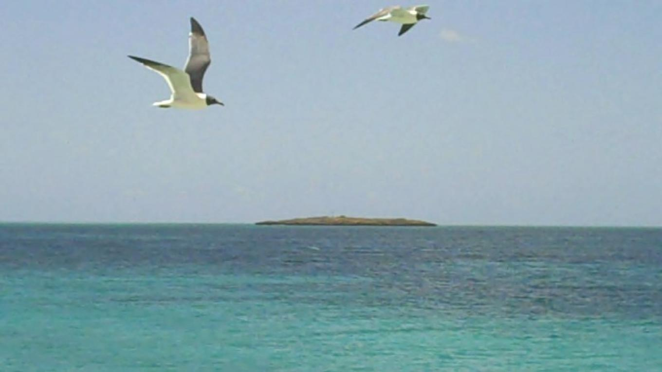 View of Pigeon Cay from Gun Point with Seagulls flying. – Bahamas Ministry of Tourism