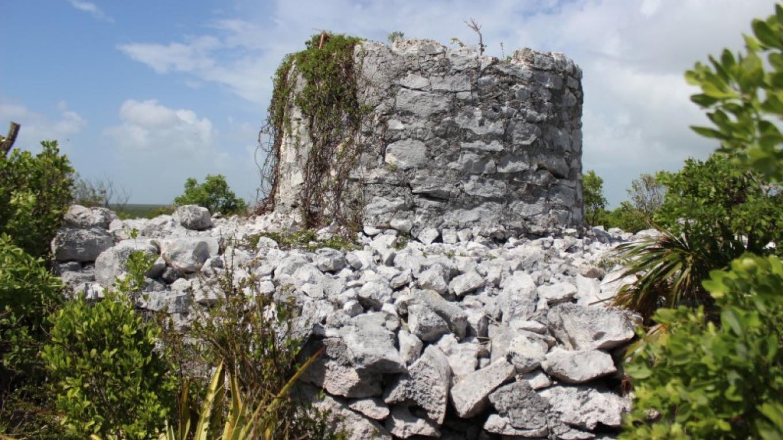 Gin House – Patricka Ferguson, Yahaka Island Tours