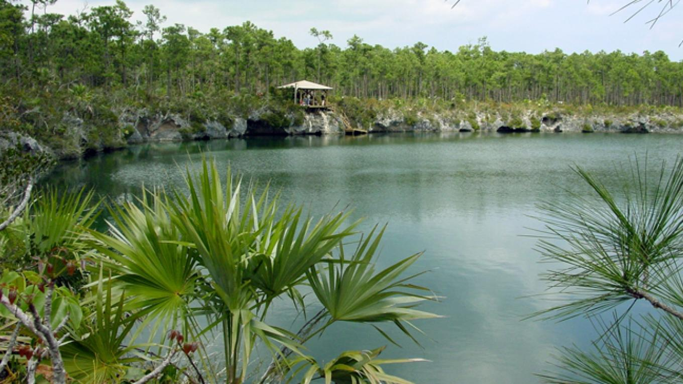 Capt. Bill's Blue Hole - Fresh Creek, North Andros – Andros Conservancy and Trust (ANCAT)