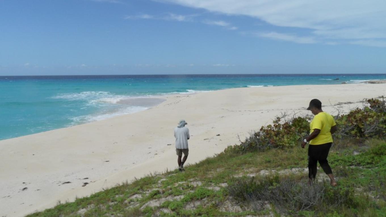 Patricka Ferguson, Yahaka Island Tours