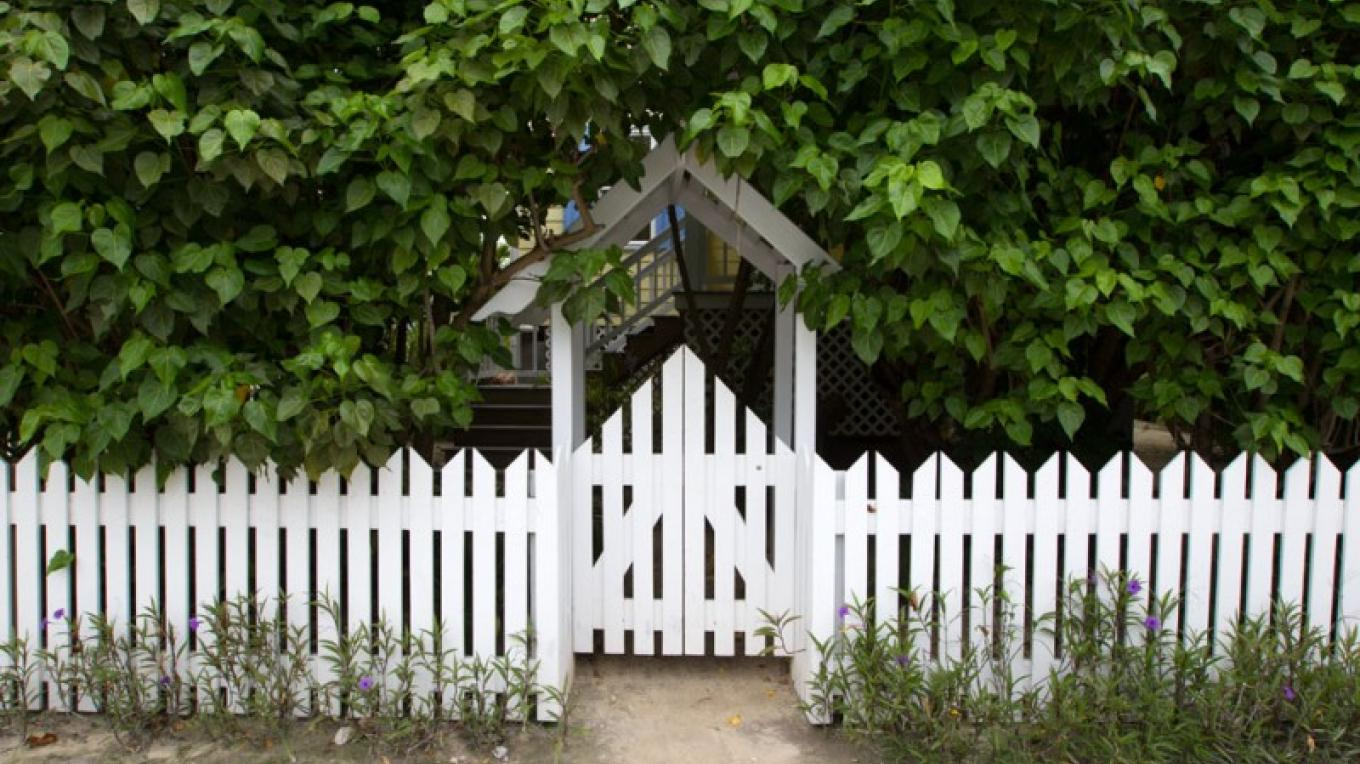 Picket fence with trees – Bahamas Ministry of Tourism
