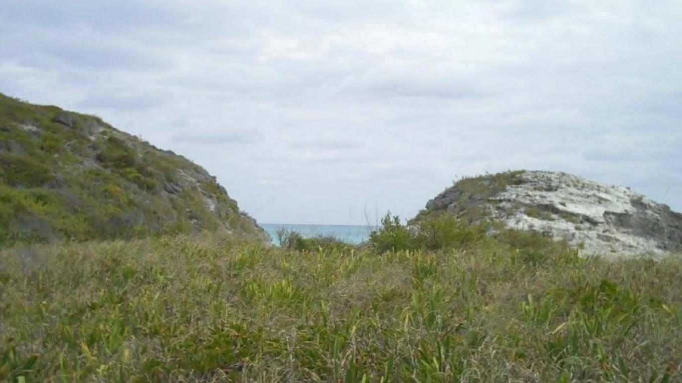 One of the Hills at Sugar Beach – Bahamas Ministry of Tourism