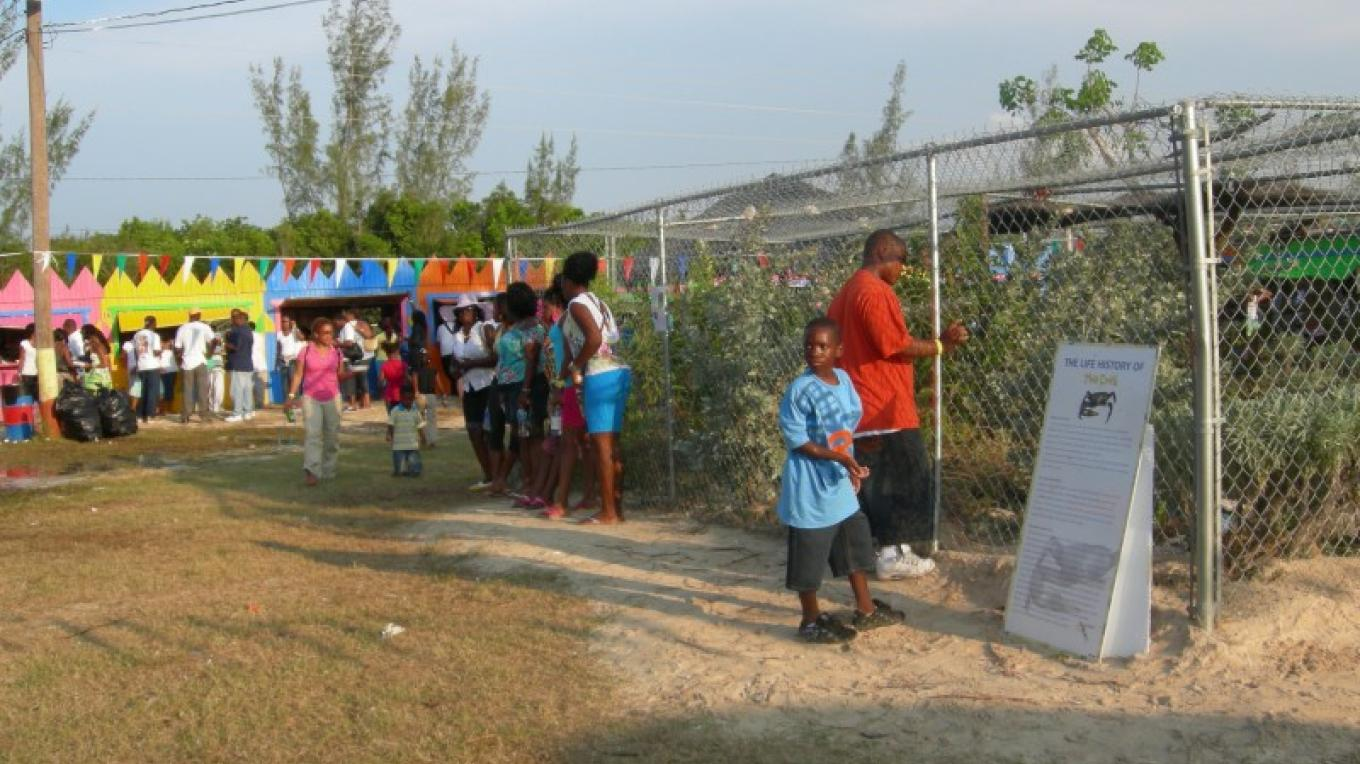 Picture of Crab Habitat at Festival. – Ministry of Tourism