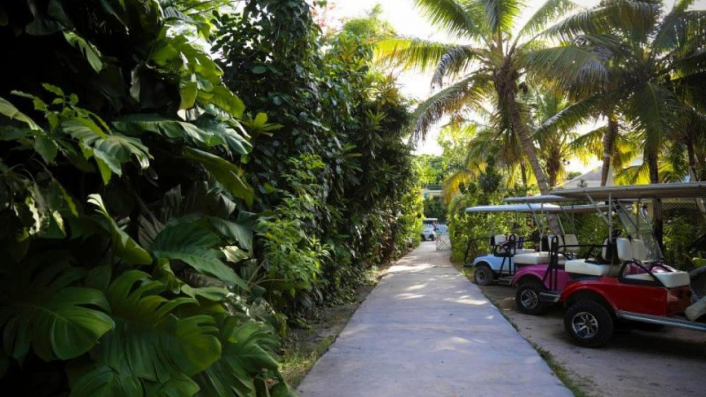 Garden Terrace – Tingum Village