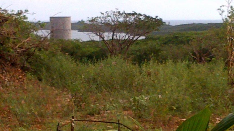 View from Eleuthera Island Organics (EIO) – Kaynell Grant