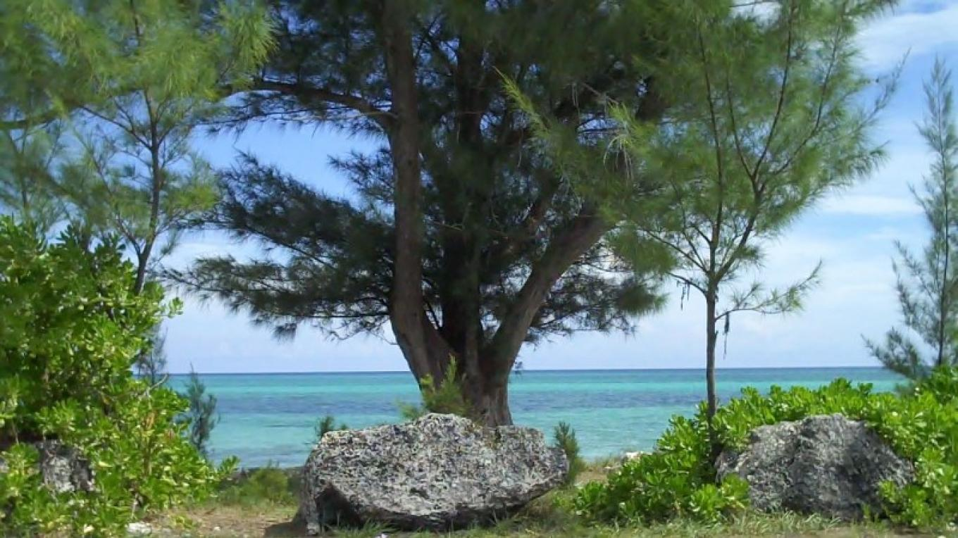 View from St. Jude's Anglican Church – Bahamas Ministry of Tourism