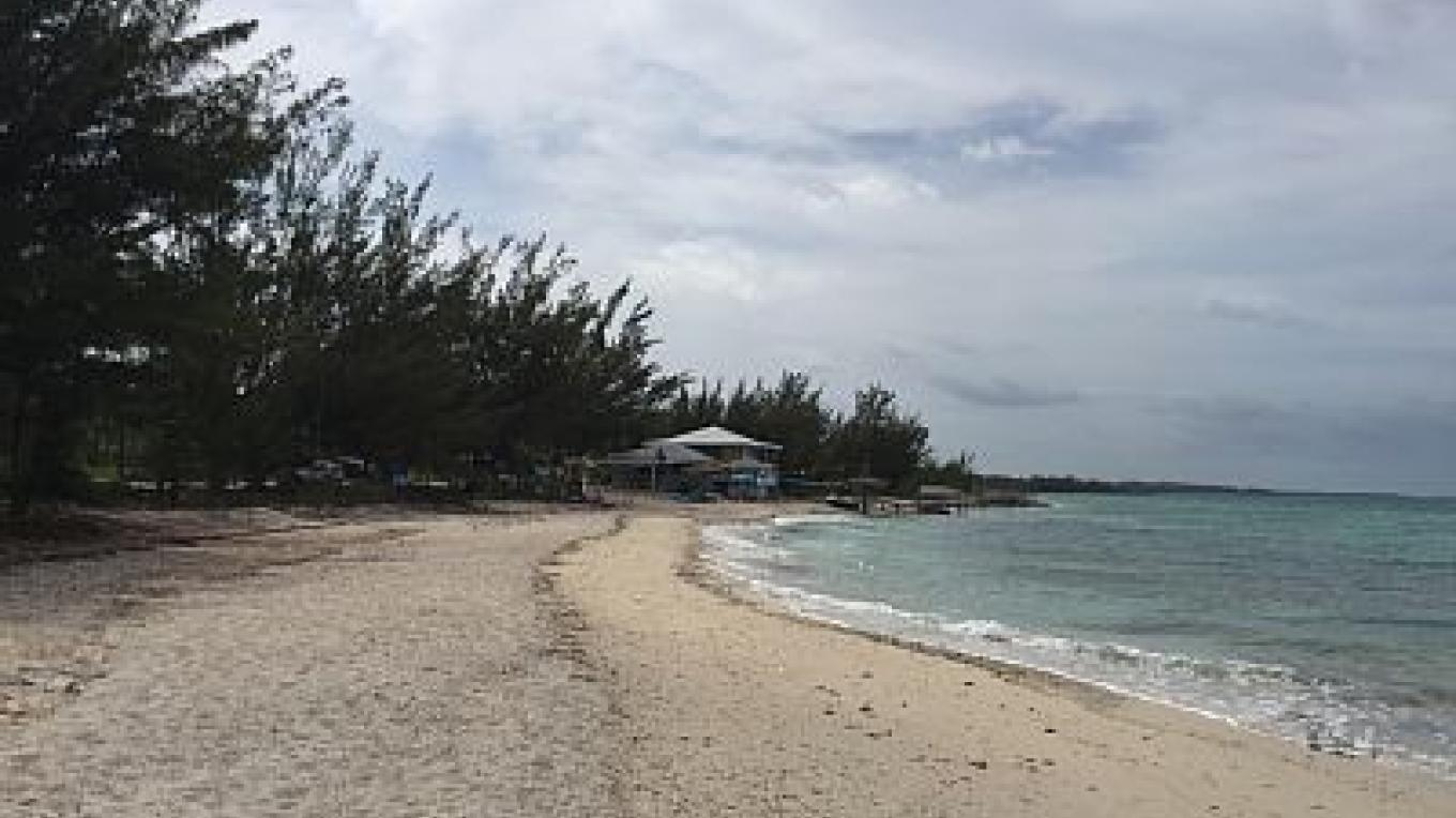View of the long stretch of beach near LeoRose Sunset Beach Bar & Grill – tripadvisor