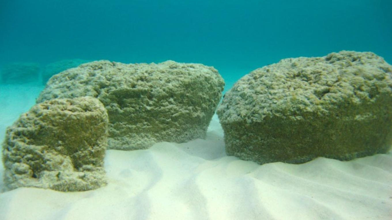 Stromatolites at Little Darby Island in The Exumas. – R Pamela Reid, PhD.-Professor, Marine Geology and Geophysics
