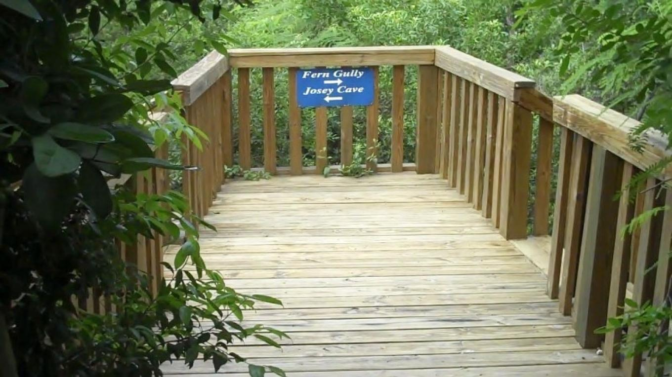 Viewing Deck at End of the Trail in Fern Gully – Bahamas Ministry of Tourism
