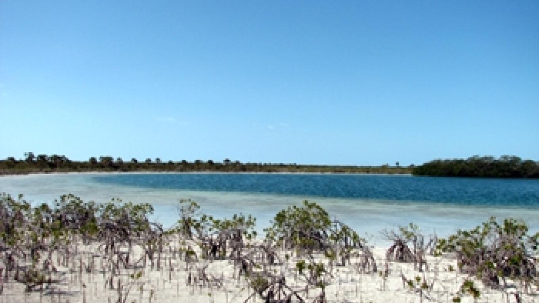 Photo of West Side National Park. – Bahamas National Trust