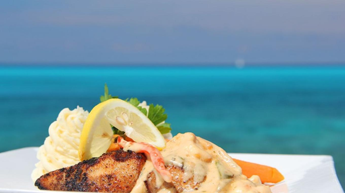 Beach Club Miah miah with cream and lobster sauce – Bimini Sands