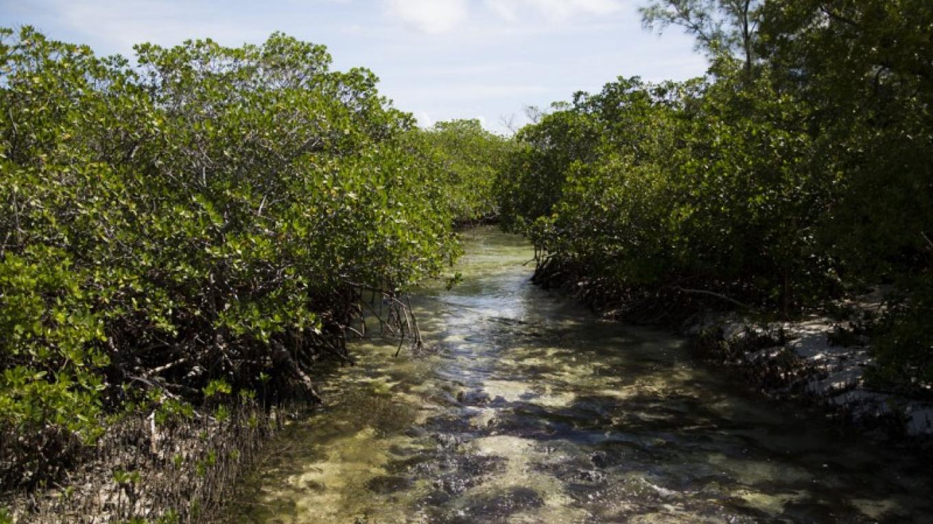 The creek at Cherokee Sound – Bahamas Ministry of Tourism