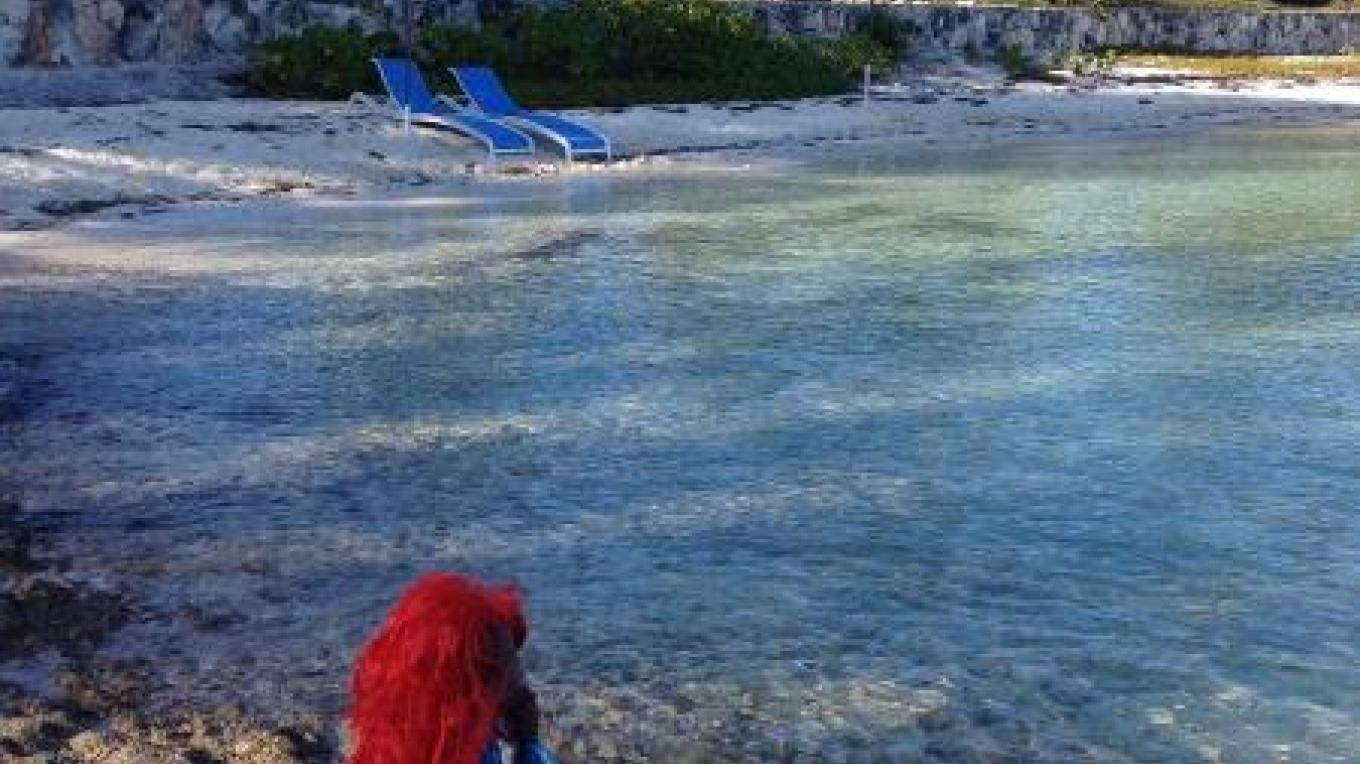The little mermaid at the Sandbar – tripadvisor