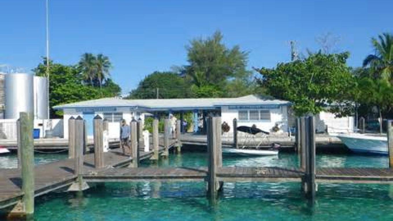 Blue Waters Dock area – Bimini Blue Waters