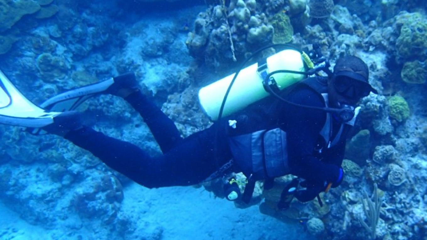 Diver enjoying the underwater sea life – Miller's Dive Shop