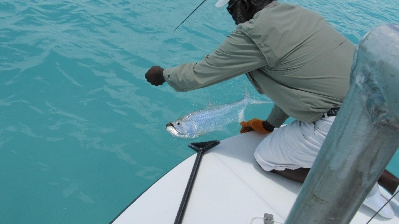 Photo of Andy Smith pulling in fish. – Broad Shad Cay Lodge