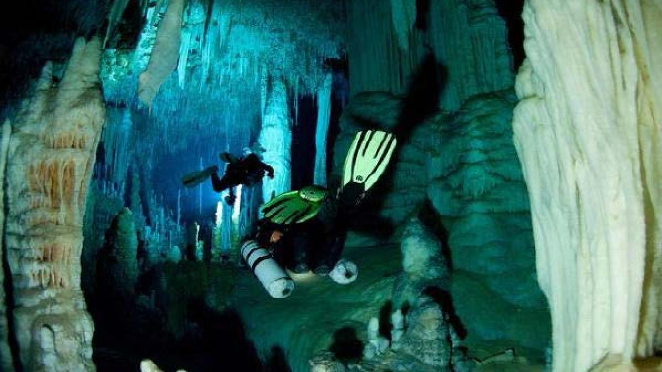 Massive Columns in Fangorn Forest, Dan's Cave, Abaco – Brian Kakuk, Bahamas Caves Research Foundation