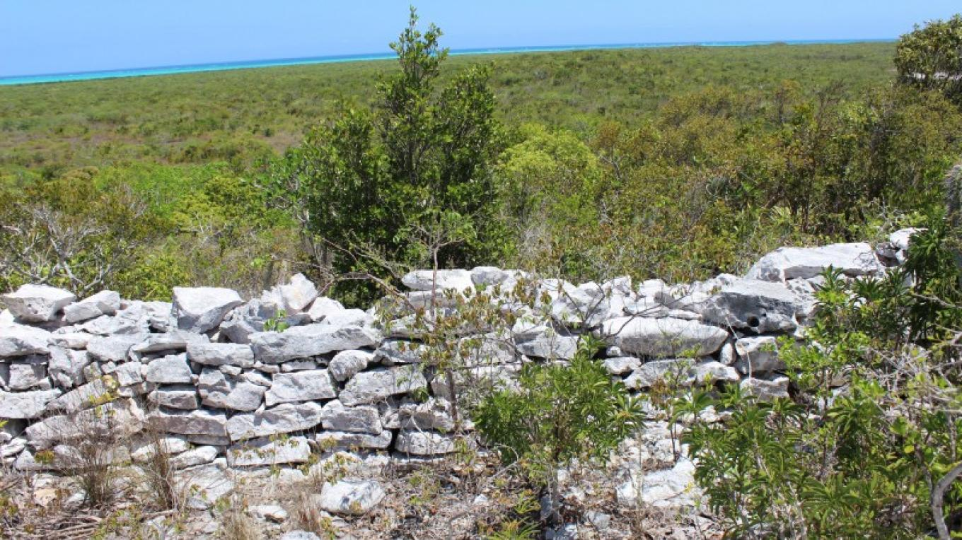 A rock wall on the top of signature hill at Duncan Pond – Patricka Ferguson, Yahaka Island Tours