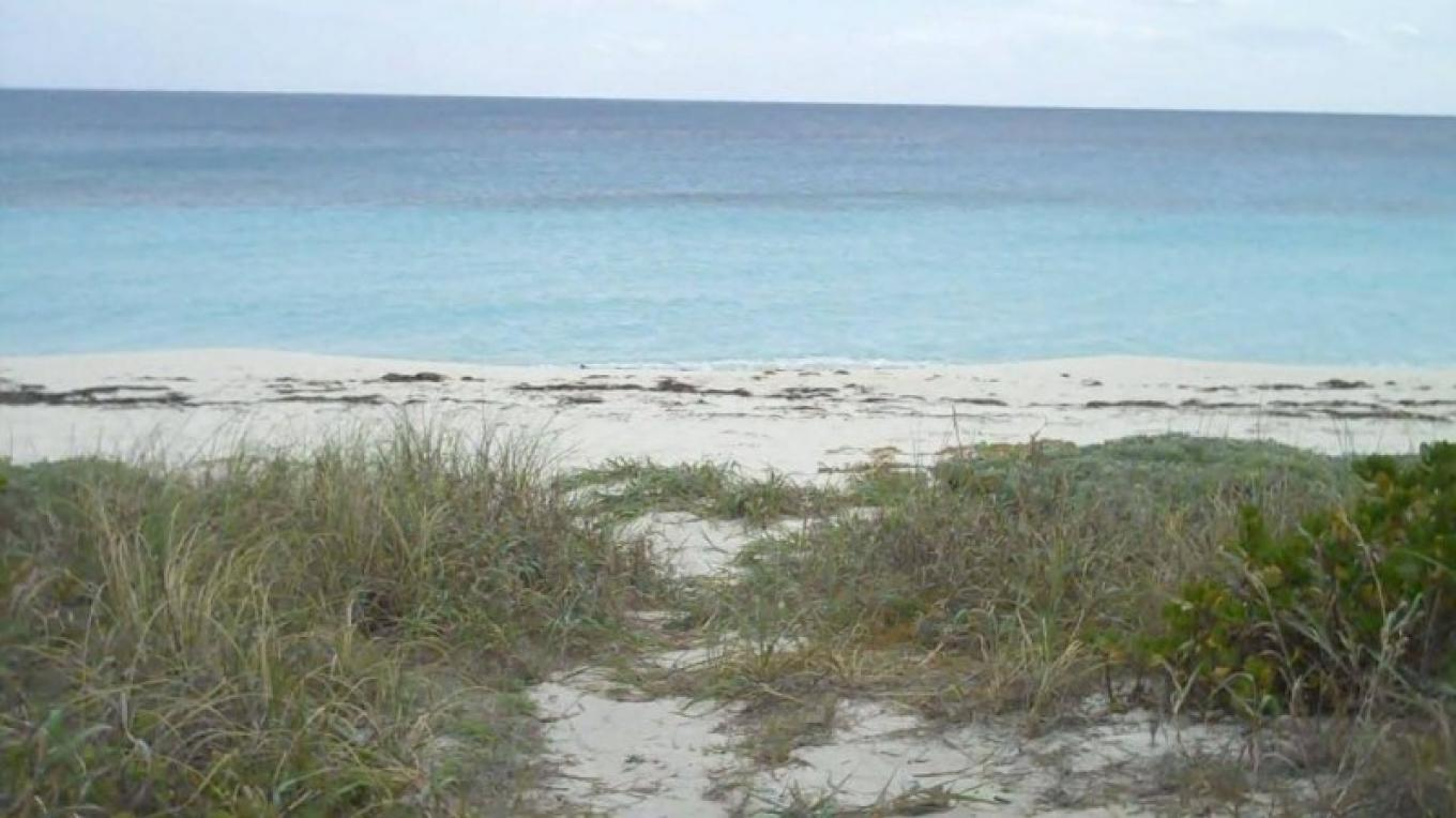 Path to Sugar Beach – Bahamas Ministry of Tourism