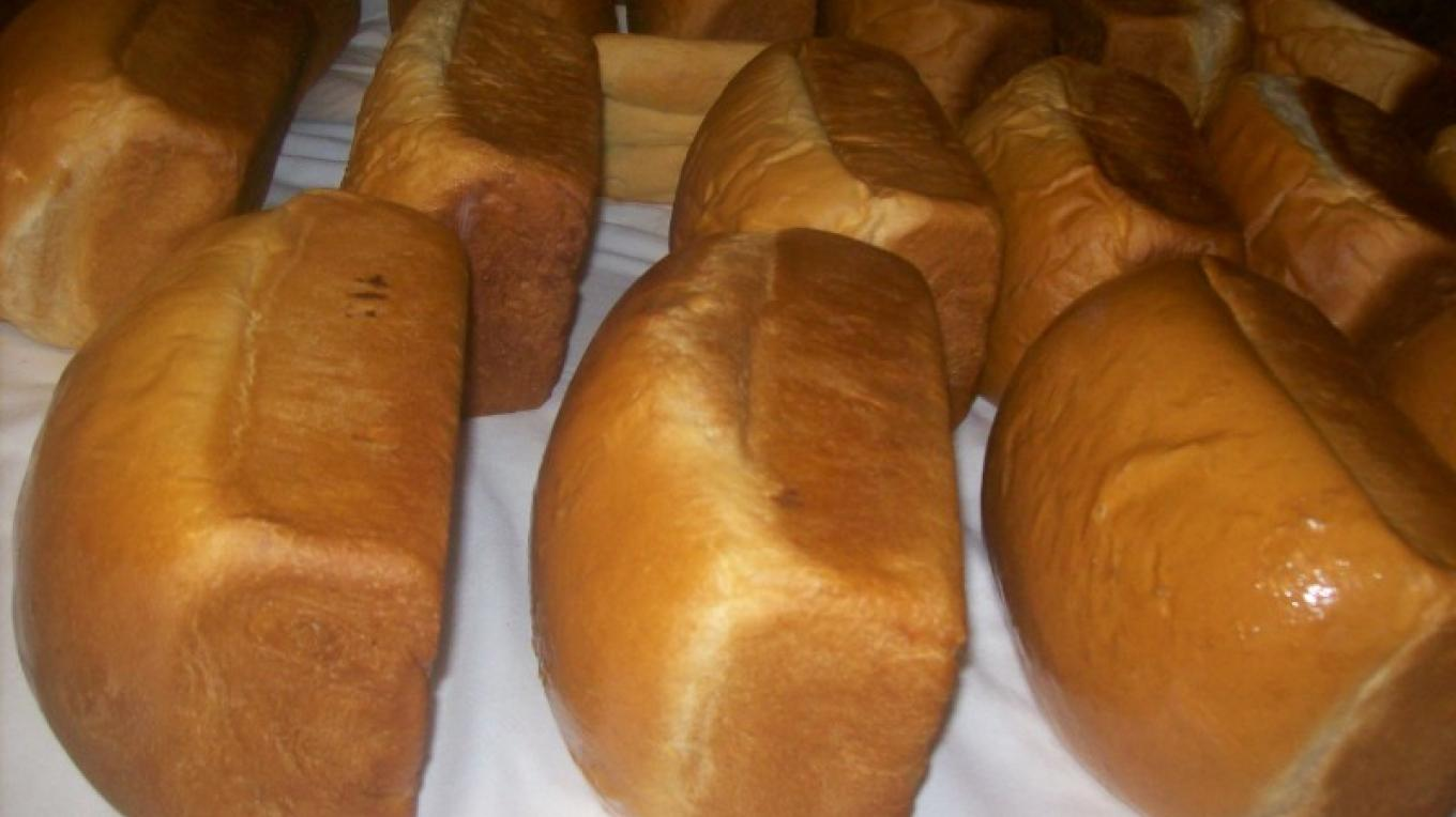 A batch of Plain Breads – undefined