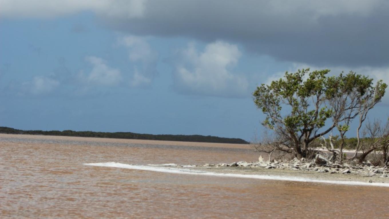 Duncan Pond – Patricka Ferguson, Yahaka Island Tours
