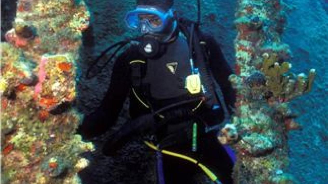 Underwater creatures make their home on a wreck. – Brendal's Dive Center