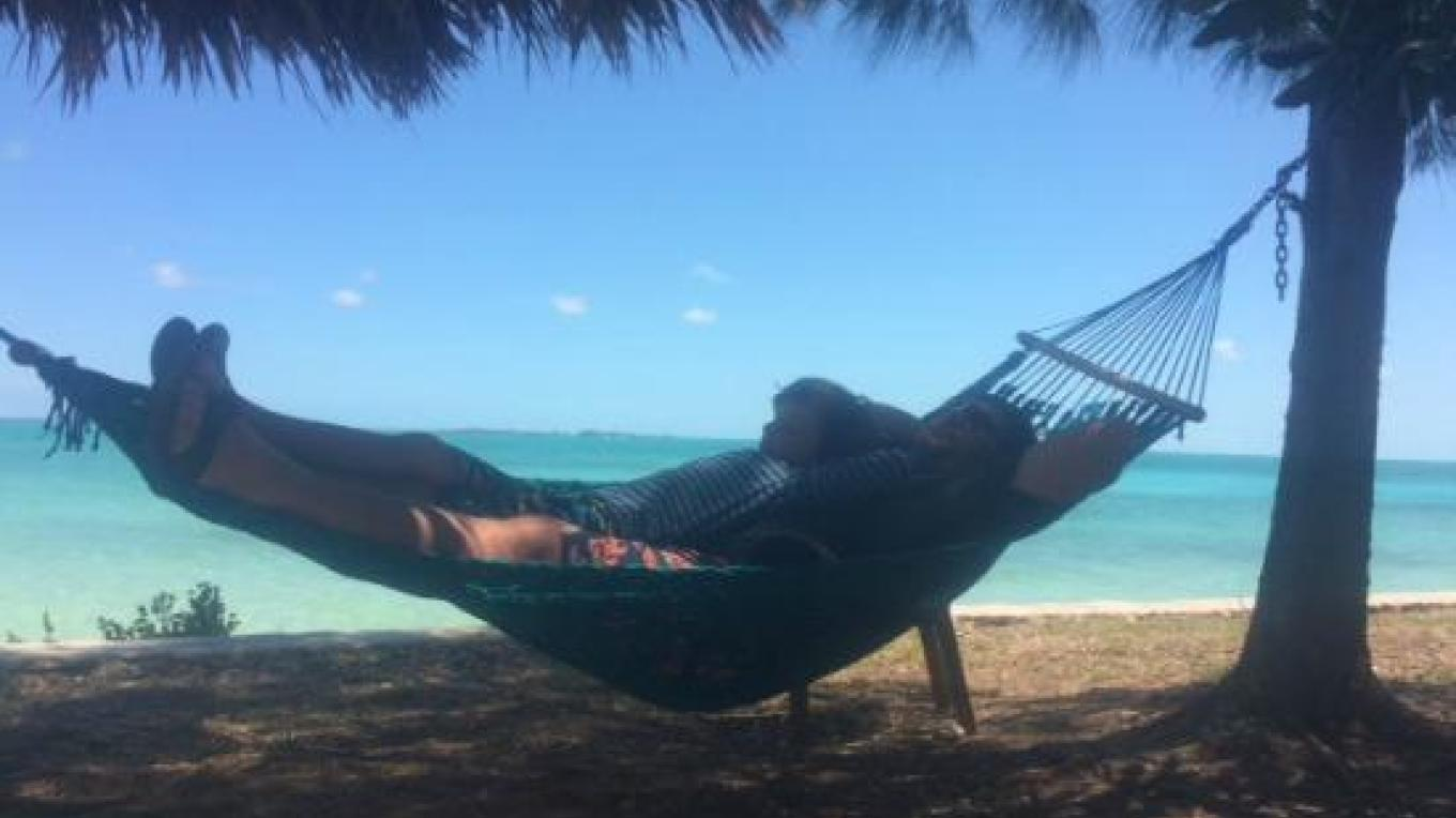 Patrons relaxing in the hammocks – tripadvisor
