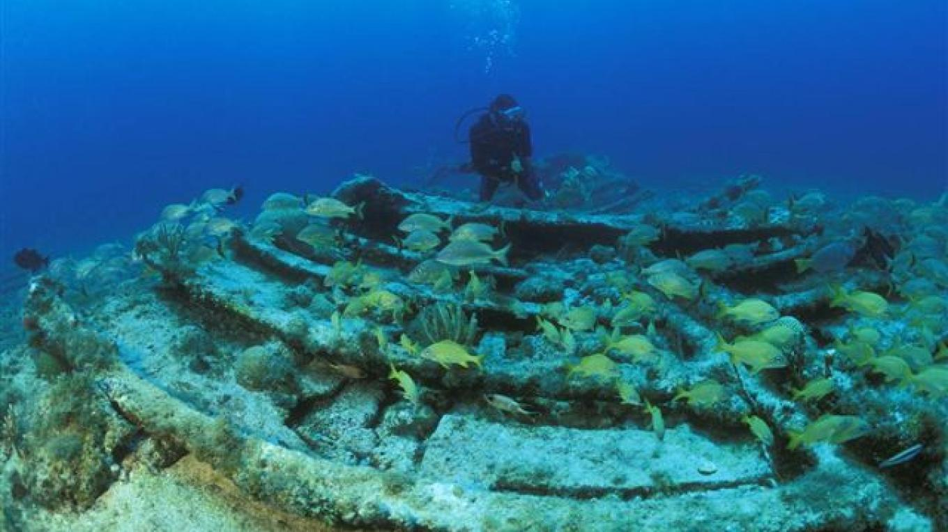 Fish at a manmade reef. – Brendal's Dive Center