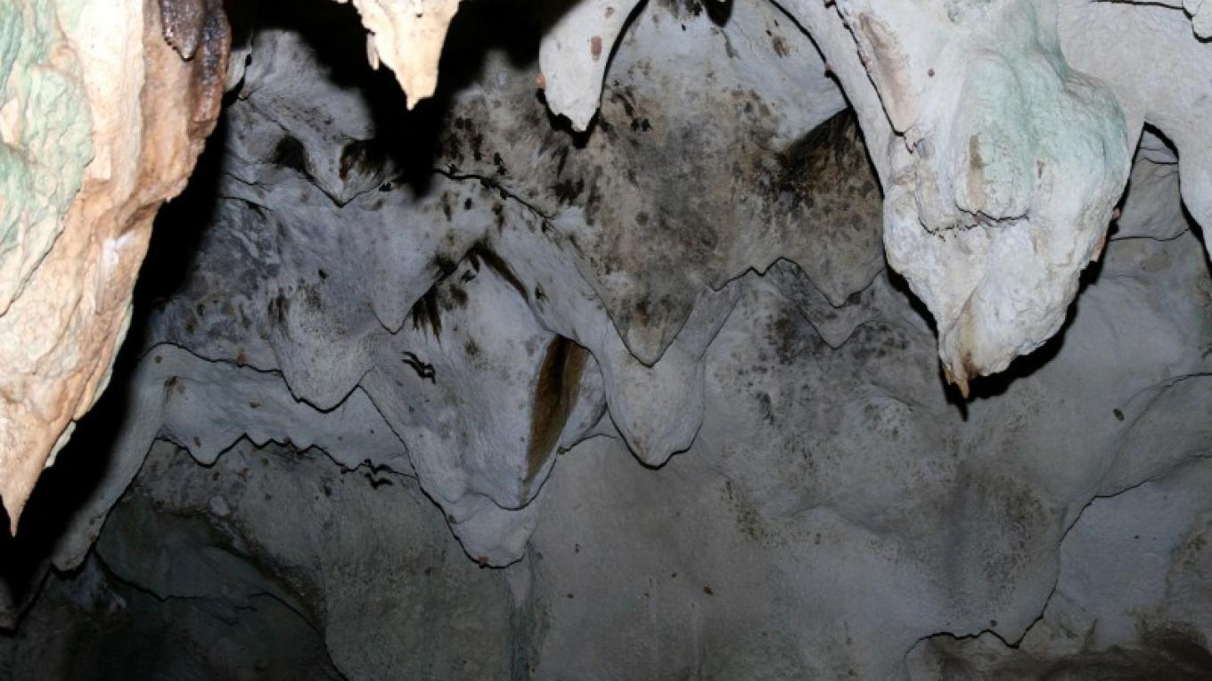 Inside Hamilton's Cave – Permission granted to Long Island Tourist Office