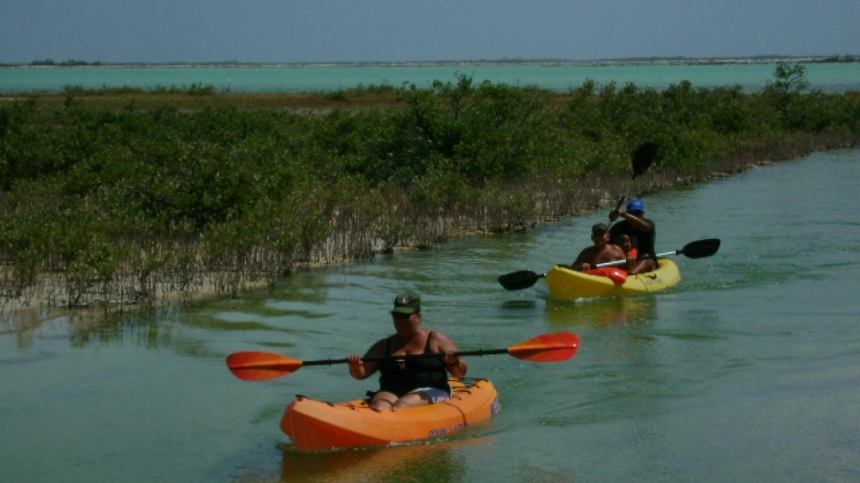 Kayaking – undefined
