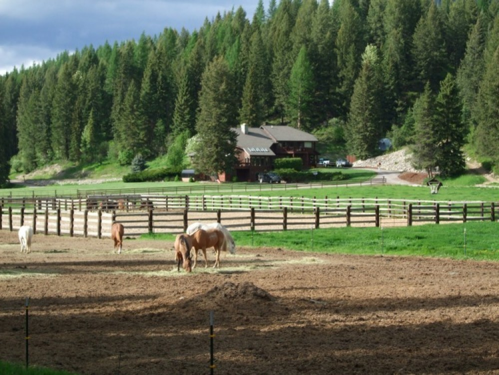 Horses with Bar W Lodge – Bar W Guest Ranch on Spencer Lake