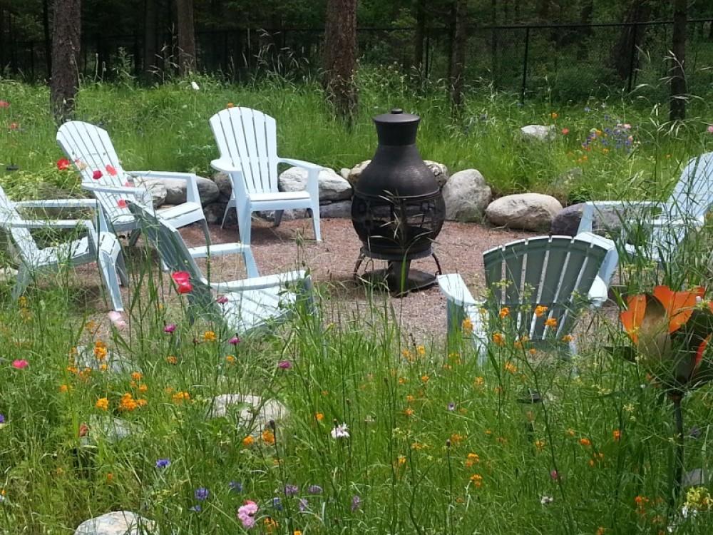 Wildflower garden – bill montgomery
