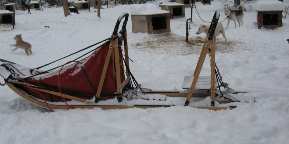 Here is the handmade sled Butch built especially for our tours. One client sits all warm and cozy in the sled bag, while another client can stand on the runners behind one of us. (check out the next picture) – Sara Parr