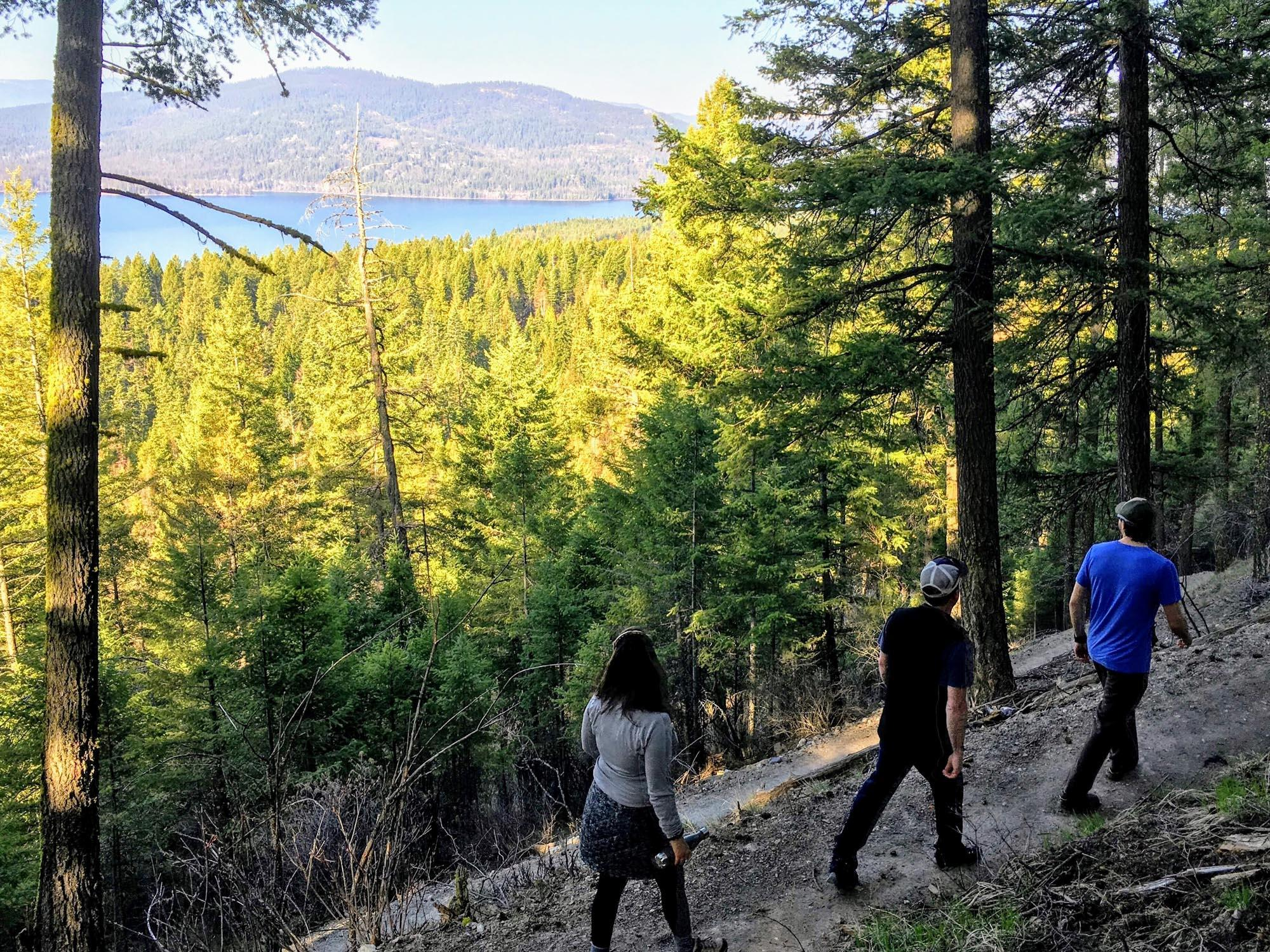 Hiking in Haskill Basin on the Whitefish Trail