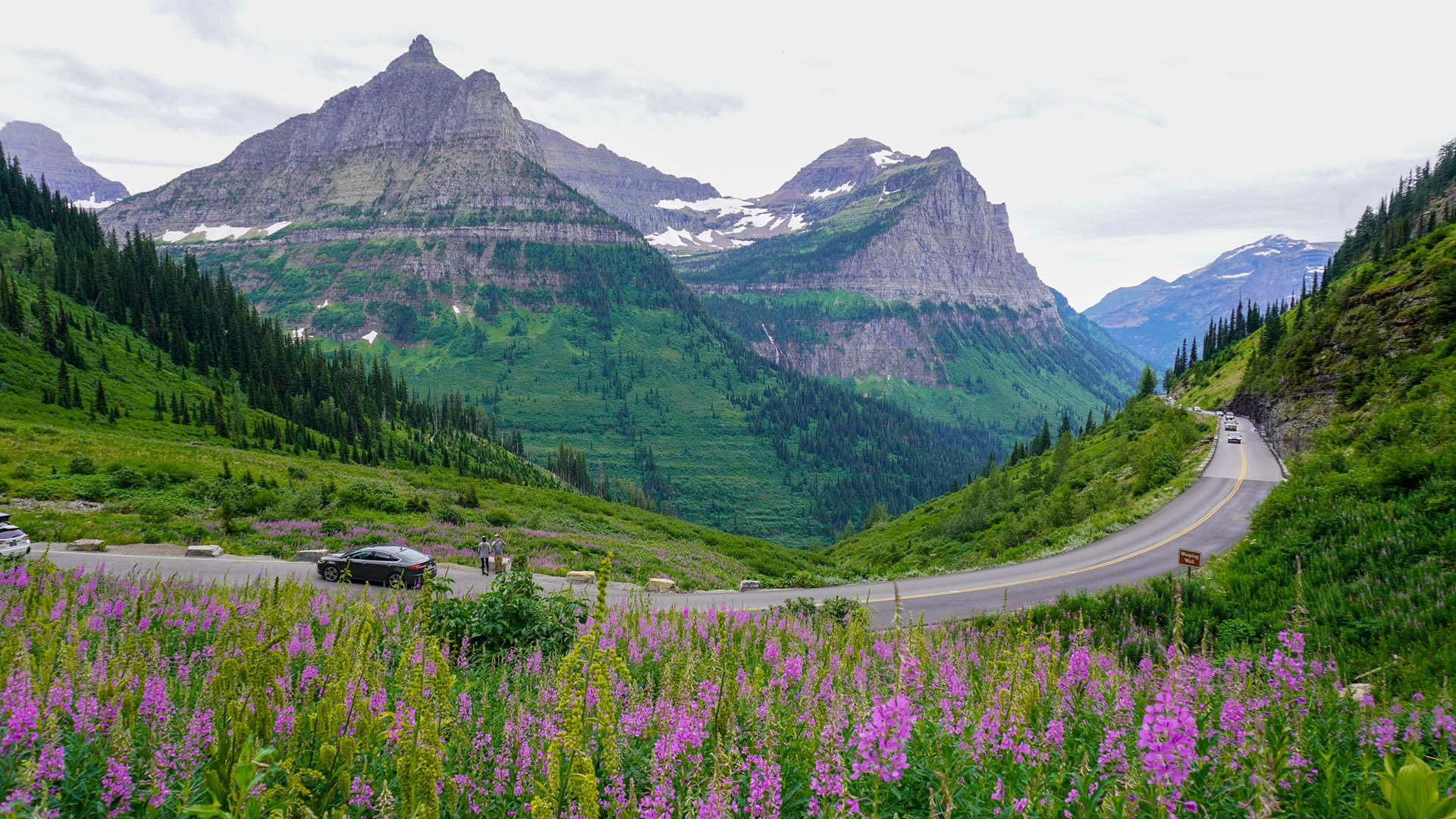 A view of Going-to-the-Sun Road near the Weeping Wall